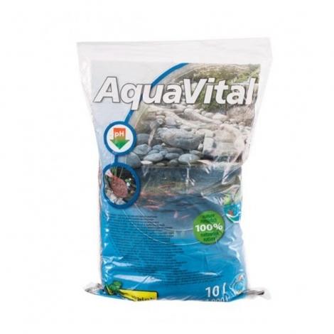 Durpės AquaVital pH reguliavimui